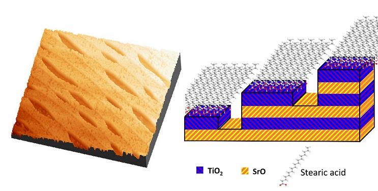 nanopatterning-red