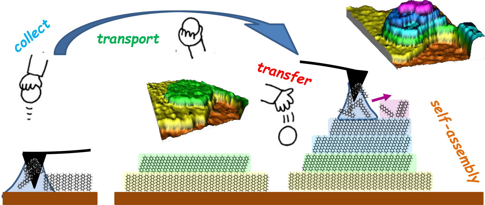AFM induced 3D nanostructuration of pentacene